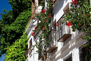 pension aduar casco antiguo marbella